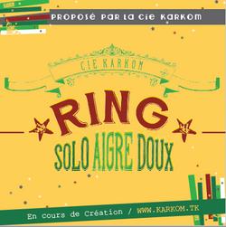 2016 Visuel solo RING