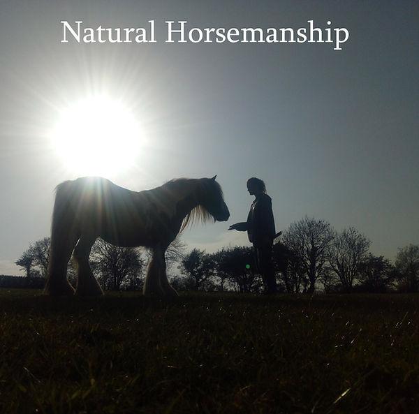 natural horsemanship copy.jpg