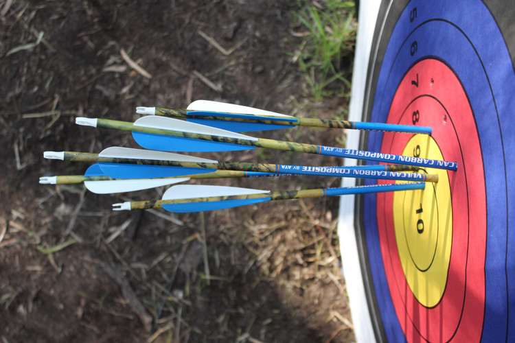 Arrows in target from above.JPG
