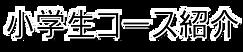 freefont_logo_ume-pgo4 (3).png