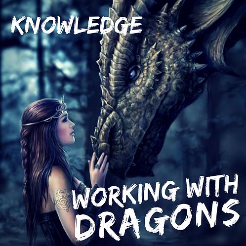 WWD - Knowledge - Video Workshop