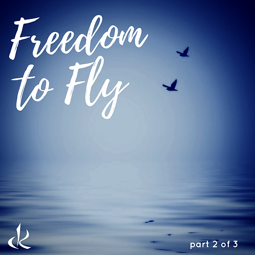 Freedom to Fly - Video