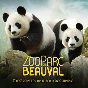 zoo-de-beauval-l.jpg
