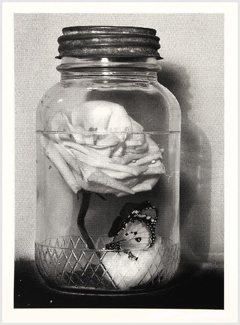 Life, Death, Beauty