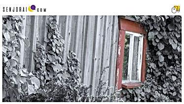 Cover Lietuva Sensta 01BQ.jpg