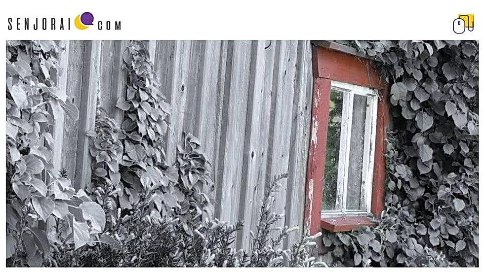 Cover Lietuva Sensta 01 (Q2).jpg