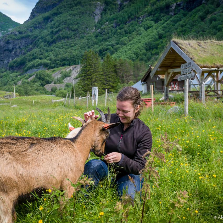 Путешествие по Норвегии. Флам.