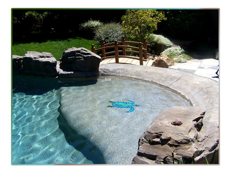 Custom pool with pebble sheen and beach entry