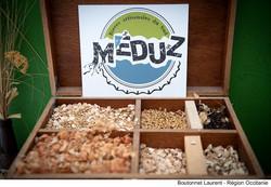 Meduz by_Boutonnet Laurent - Region Oc