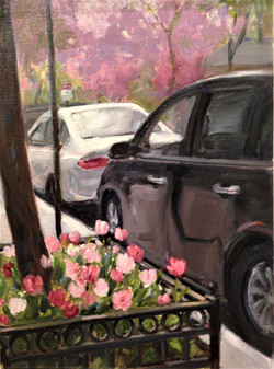 Tulip Parking NYC
