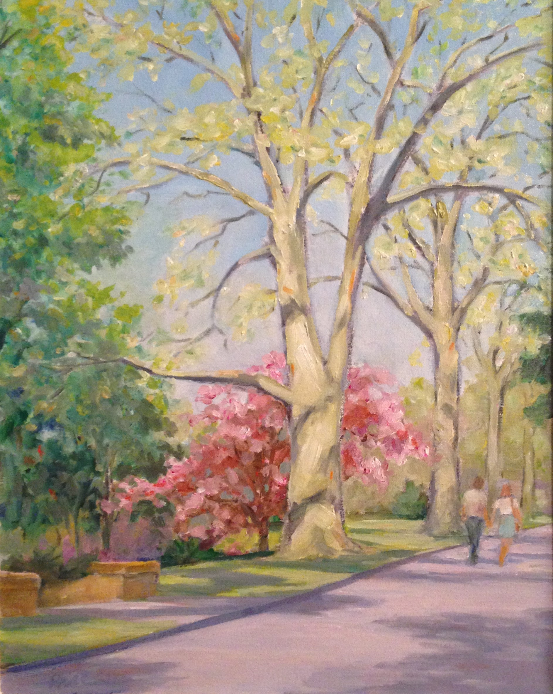 Spring Stroll Along Everhart Park