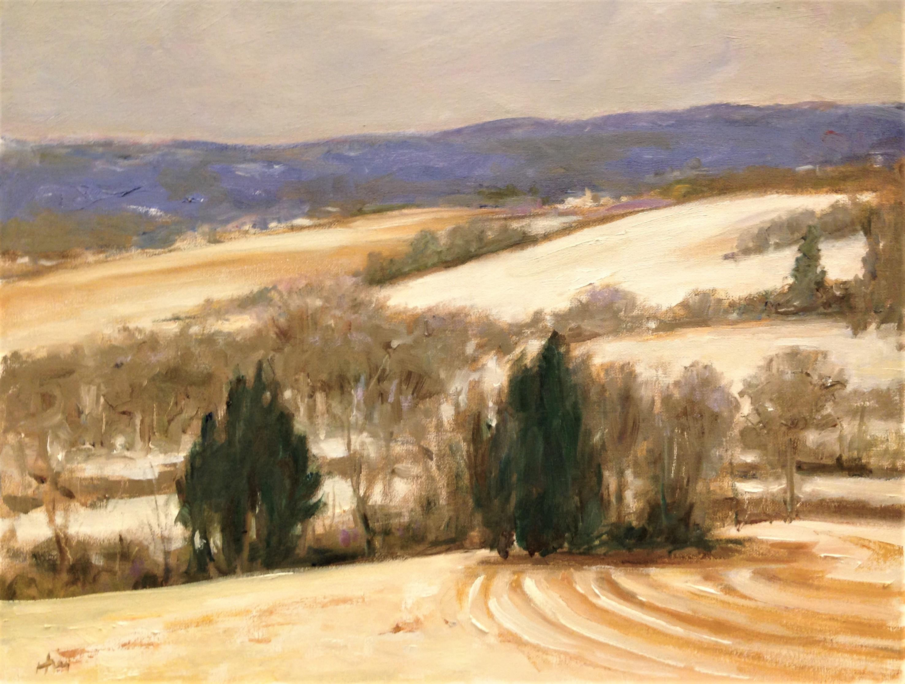 Across the Valley- Straub's Preserve