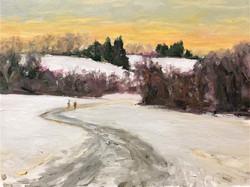 Winter Walk Stroud Preserve