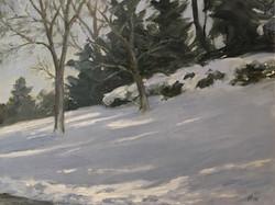 Winter Shade