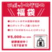 福袋2019.jpg