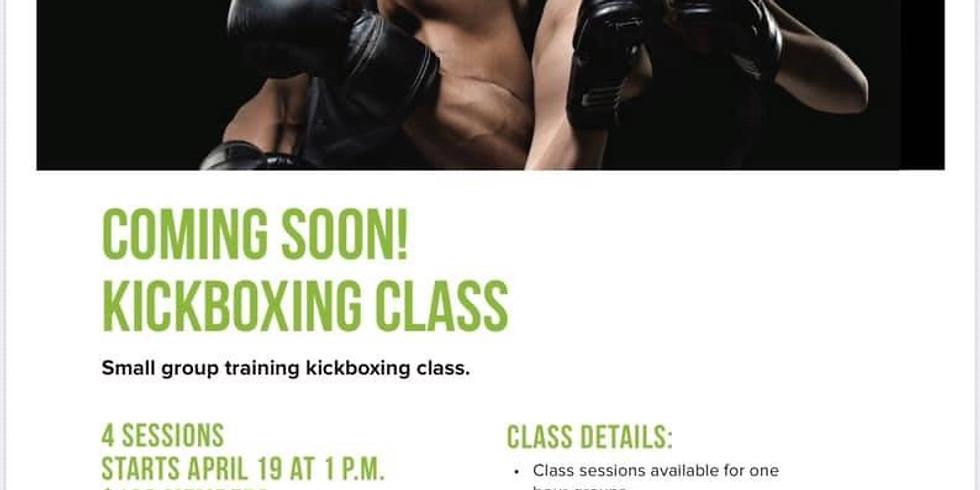 Kickboxing Small Group Training
