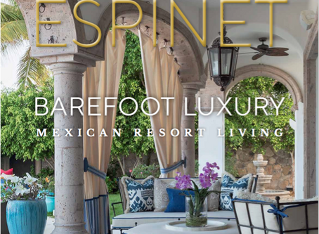 #BookCrush: Barefoot Luxury by Sandra Espinet