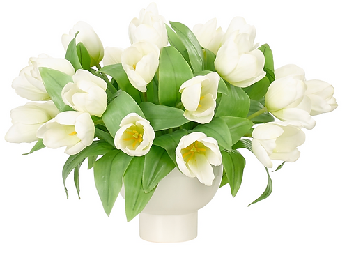 Tulips In White Container