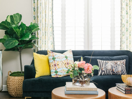 Why We Love Fiddle Leaf Fig Trees