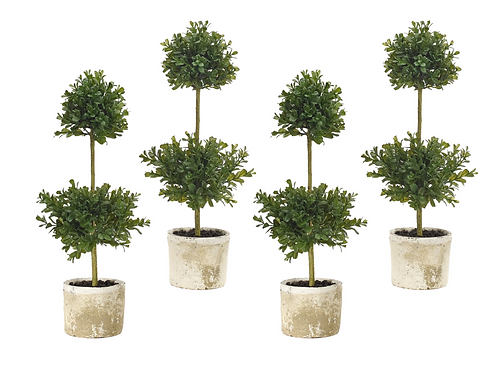 Boxwood Topiary Set of 4