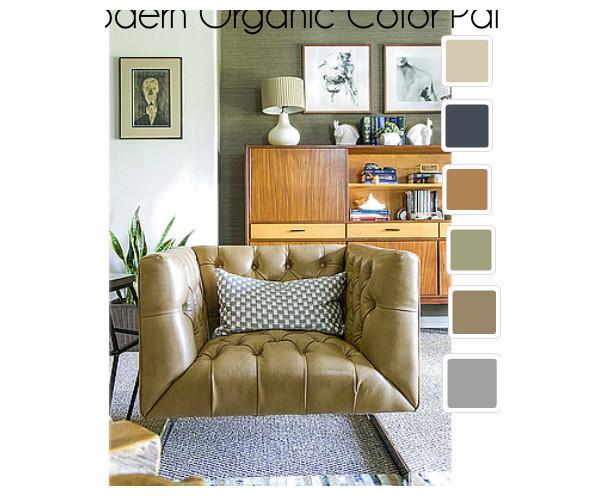 OB-Modern Organic Living Room