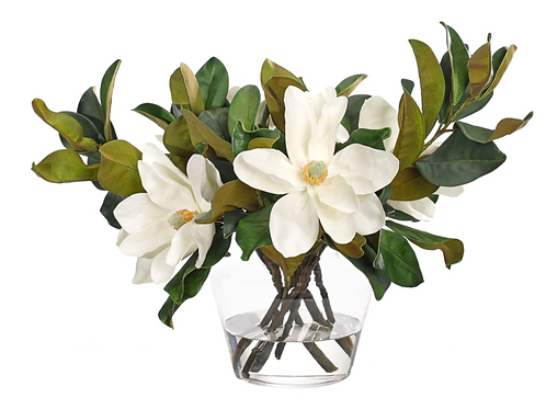 Magnolia - White In Glass