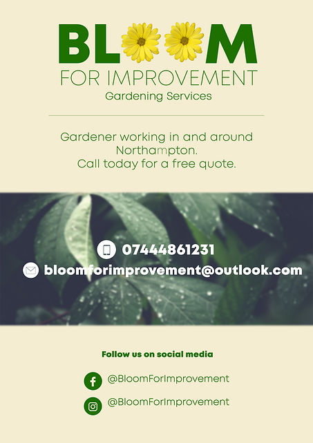 Bloom Leaflet design correct.jpg