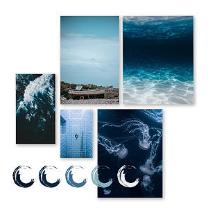 Central Reef Mood Board
