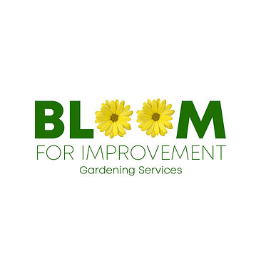 Bloom For Improvement Green and Yellow F