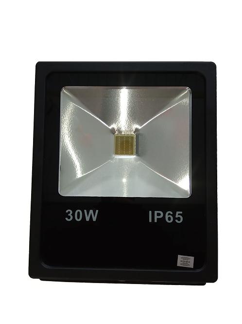 Projecteur détecteur 30W IP65