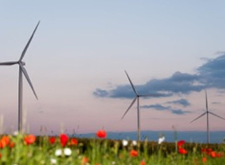 French wind industry urges for wind framework
