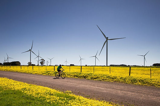Australia's-largest-wind-farm.jpg