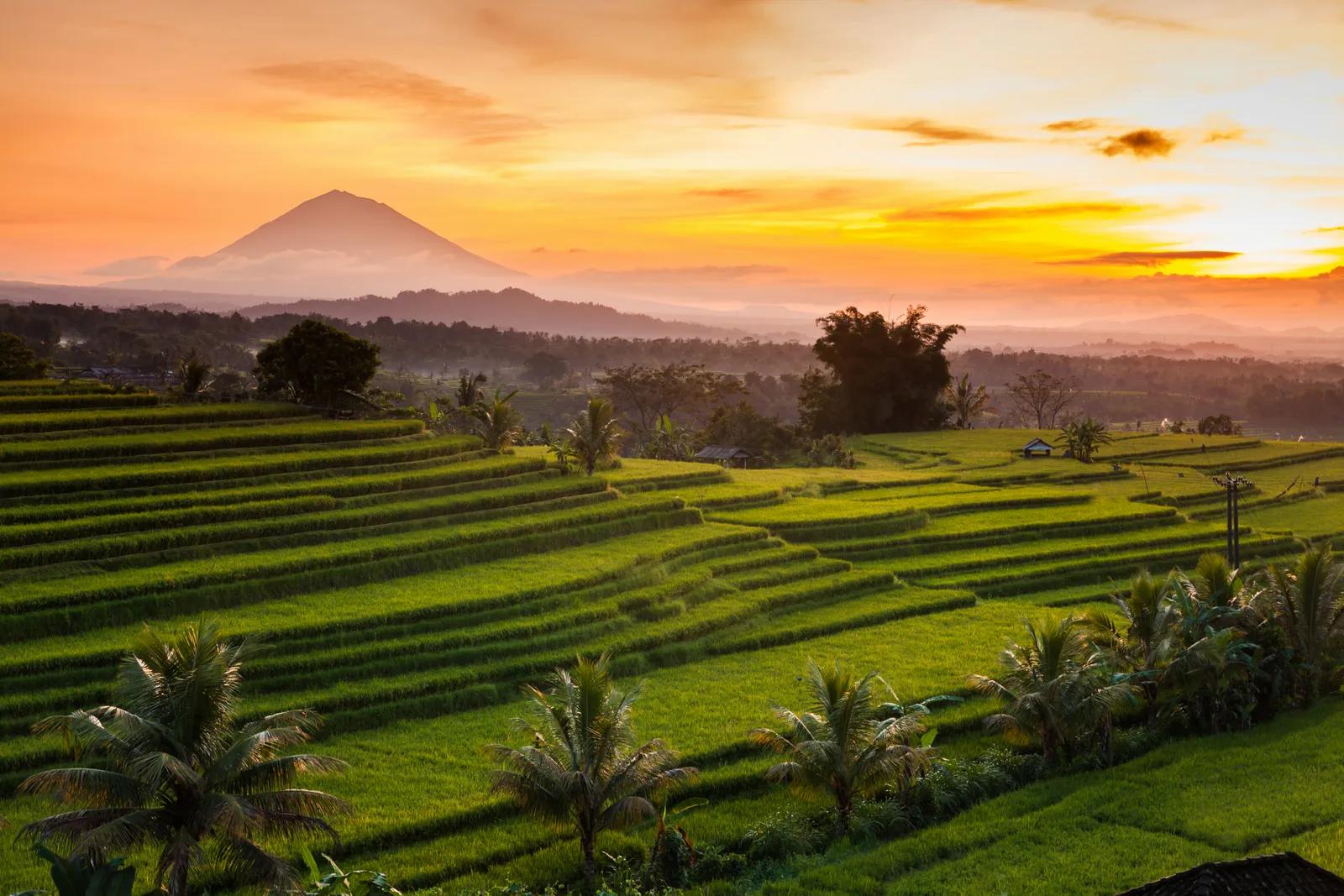 Indonesia_GettyImages-636714416.jpg.webp