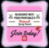 Pink fancy frame