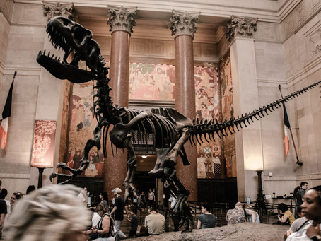 NYC: Reopening Museums & Restaurants?