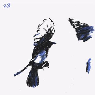 Pastel Animation 6