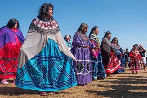 Lady Bird dancers, CRIT Nation