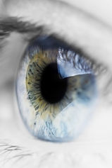 blue-eye-vertical-e1448400147443.jpeg