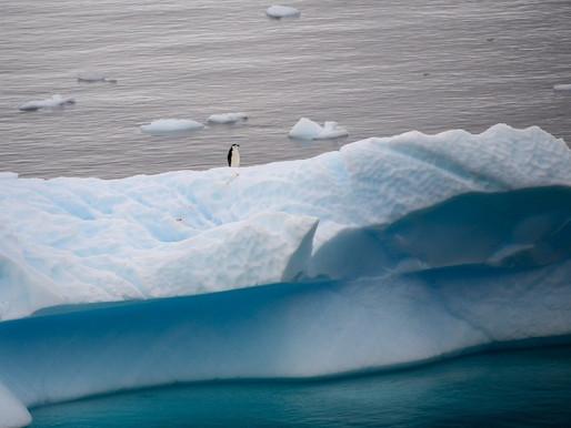 Come si regola l'Antartide?