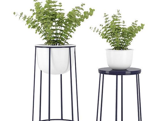 Plant 14  | 3dmodel