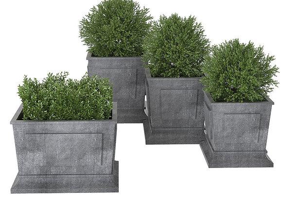 Plant 01  | 3dmodel