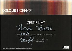 2019_11_13_Glynt_Colour-Licence_edited.j