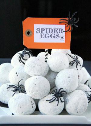 Spider eggs.jpg