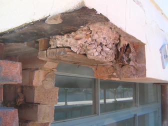 25 Waruda St. Remediation Roof west