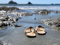 Playa Danta Costa Rica