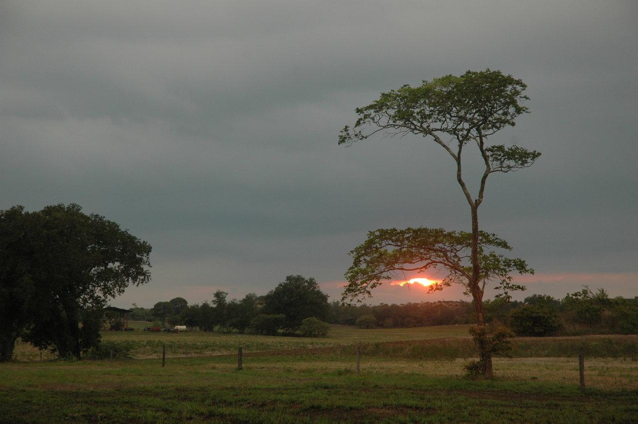 sunset near Monte Verde