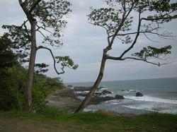 Playa San Juanillo