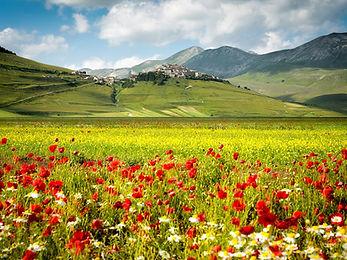 Castelluccio Village in Umbria Italy