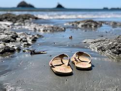 Playa Dante