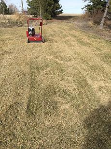 power raker on spring grass